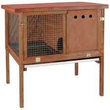 Large Rabbit Hutch Ware Hd Deluxe Rabbit Hutch Petco