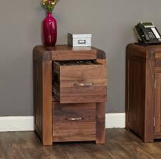 The Range Filing Cabinet Baumhaus Shiro Walnut Range 2 Drawer Vertical Filing Cabinet