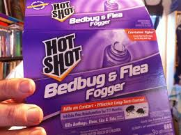 What Kills Bed Bugs For Good How To Bomb For Bedbugs Fleas Lice U0026 Ticks Live Demonstration