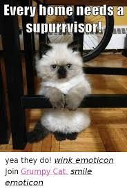 Wink Face Meme - 25 best memes about grumpy cat smile grumpy cat smile memes
