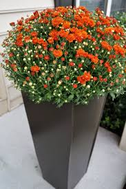 Outdoor Planters Large by Decor Tall Planters Large Indoor Planters Rectangle Planter Box