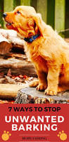 How To Train Dog To Stop Barking 25 Best Stop Dog Barking Ideas On Pinterest Dog Barking At