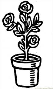 coloring pages roses in a pot natural world u003e flowers free