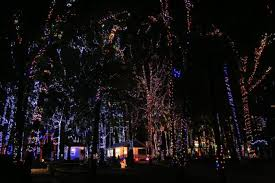 sportsman lake park cullman al christmas lights 11 best christmas light displays in alabama 2016