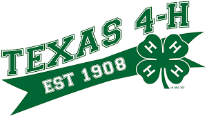 volunteer texas 4 h