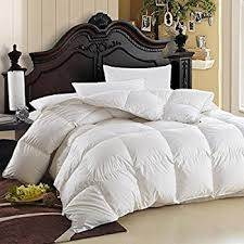 Duvet Protector King Size Amazon Com Luxurious Queen Size Siberian Goose Down Comforter