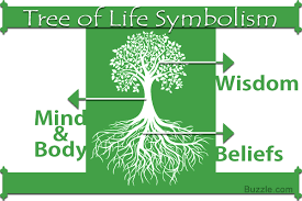 tree of life a lucid explanation about the meaning of tree of life