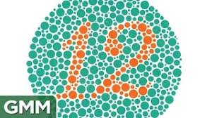 Are Horses Color Blind Cheap Army Color Blind Find Army Color Blind Deals On Line At