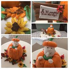 lil pumpkin baby shower cake 2 birds and a boss