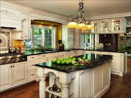 What Are The Best Kitchen Cabinets Kitchen Top Rated Kitchen Cabinets Modern Kitchen Design Ideas