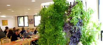 Vertical Gardening by Vertical Garden Refarmers