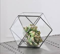 hanging geometric glass terrarium glass globe hanging terrarium
