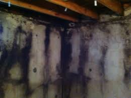 Insulating Basement Concrete Walls by Re Think Fibreglass Insulation In Basements Insulate Smart