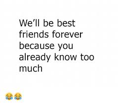 Friends Forever Meme - we ll be best friends forever because you already know too much