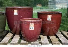 large plastic plant pots uk extra large plant pots plastic large