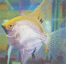 mosaic tile designs gold angelfish mosaic tile art