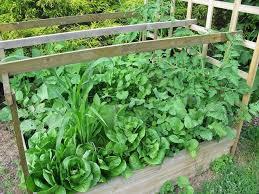 26 best intensive gardening images on pinterest vegetable garden