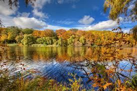 fall in high park toronto toronto fall in high park gren flickr