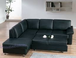 Contemporary Leather Sleeper Sofa 193 Best Sofa Sleepers Images On Pinterest Sleeper Sofas Sofa