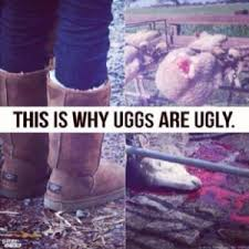 ugg sale hoax ugg boots peta and the affiliate marketeer bad facts citizen