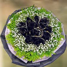 black roses delivery singapore black roses delivery black for sale