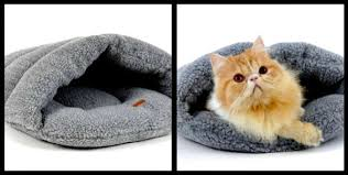 small pet beds 7 best cozy pet beds for snugglers petslady com