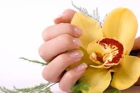 manicure deluxe nail salon dallas tx 95230 nail salon