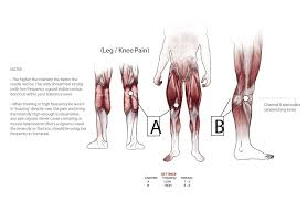 Diagram Of Knee Anatomy Marc Pro Where To Place The Marc Pro Electrical Stimulation