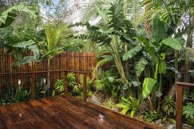 tropical garden ideas small balinese garden design ideas 1000 images about tropical