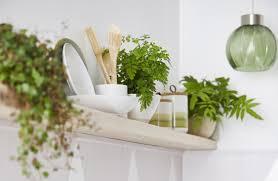 kitchen cupboard storage ideas dunelm start cleaning with dunelm the new kitchen storage
