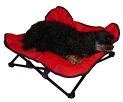 amazon com hdp elevated padded napper cot space saver pet bed
