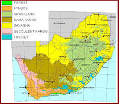 africa map landforms world s physical geography physical geography of world physical