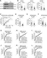 nptx2 and cognitive dysfunction in alzheimer u0027s disease elife lens