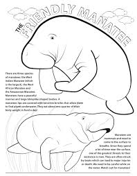 manatee coloring pages in coloring page omeletta me