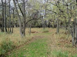 mn landscape arboretum minnesota landscape arboretum hiking