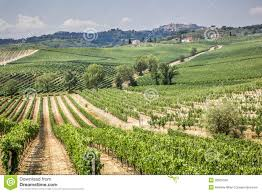 Montepulciano Italy Map by Vineyard In The Area Of Production Of Vino Nobile Montepulciano