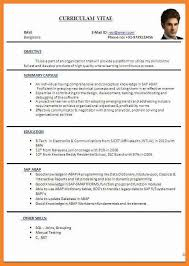 sample format resume curriculum vitae english example pdf free cv