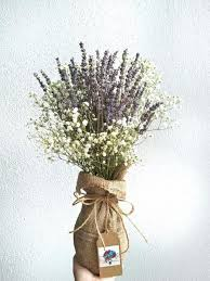 baby breath lavender with baby s breath mirage flowers