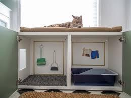 pet room ideas pet friendly home ideas for pet friendly decorating and design hgtv