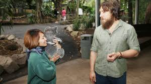 daniel bryan and natalya visit the lone pine koala sanctuary in