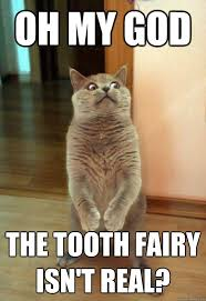 Tooth Fairy Meme - oh my god the tooth cat meme cat planet cat planet