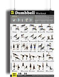 work out plans for men at home amazon com bodyweight workout exercise poster now laminated gain