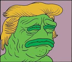 To Meme - pepe the frog to sleep perchance to meme by matt furie