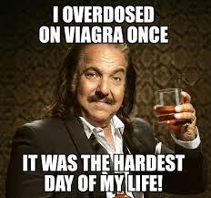 High Horse Meme - pin by bob szczepanski on vulgar humor pinterest adult humor