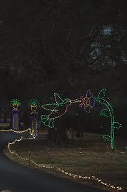 Dominion Lighting Dominion Garden Of Lights At Norfolk Botanical Garden The