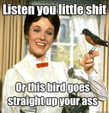 Stfu Meme - listen you little shit or this bird goes straight up your ass