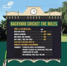 3 steps to a winning backyard cricket pitch motherpedia