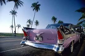 si e auto avis noleggio auto miami e florida consigli pratici low cost