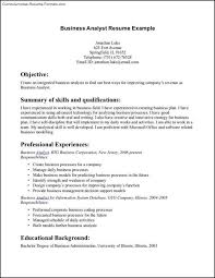 Bussiness Resume Download Business Resume Examples Haadyaooverbayresort Com
