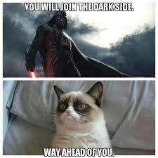 Grumpy Cat Coma Meme - grumpy cat star trek awesome description from pinterest com i
